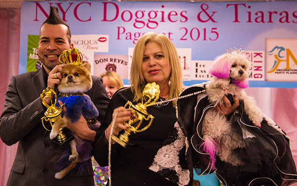 The king and queen of Doggie and Tiaras Pageant. Image vie Cheyenne Cohen.