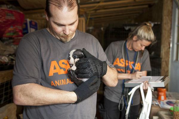 ASPCA Raid Alabama 8