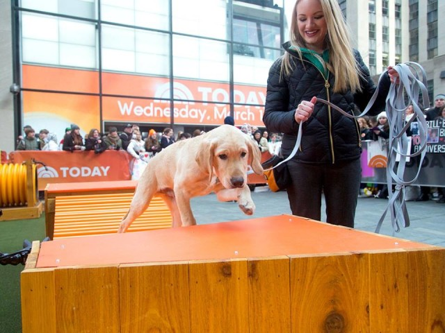 today show 2