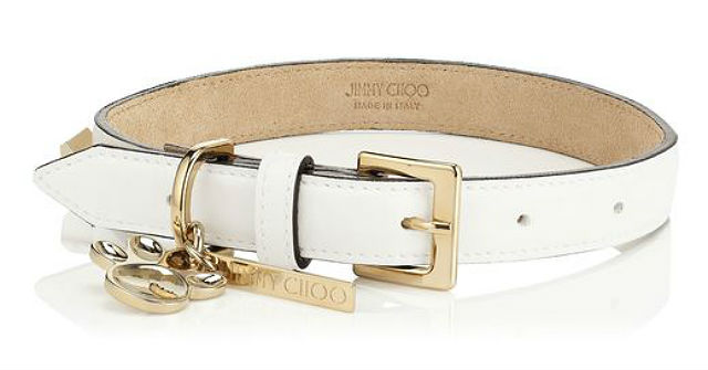 jimmy choo collar