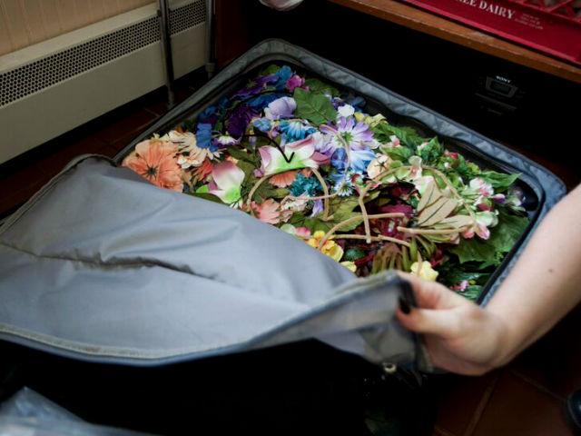 SG suitcase 1 resized