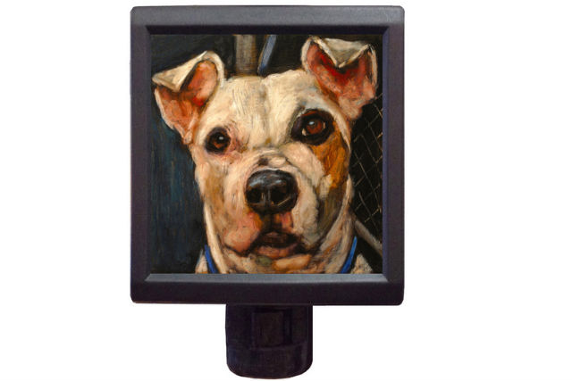 A nightlight from An Act of Dog
