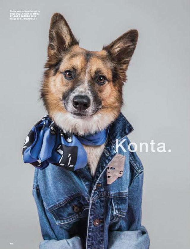 LOVe magazine Konta