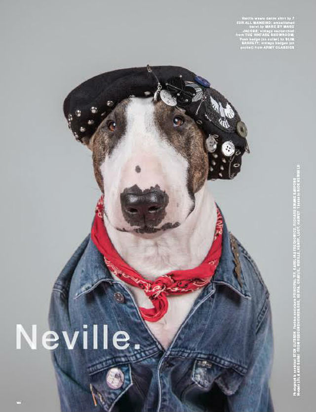 LOVe magazine Neville