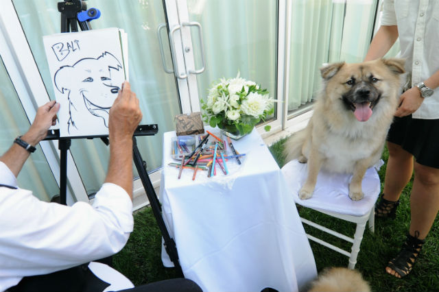 A pup posing for a caricature.