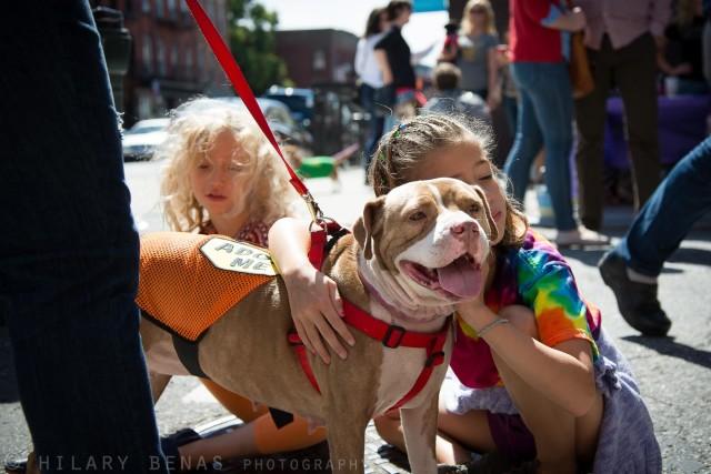 brooklyn badass animal rescue