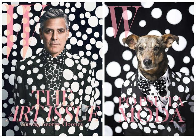 dog recreates magazine cover