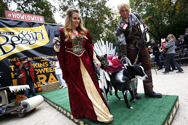 Medieval dog. Photo by Jason DeCrow/Invision for Purina Beggin'/AP Images