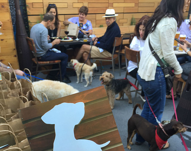 Yappy Hour. Image via Healthy Spot