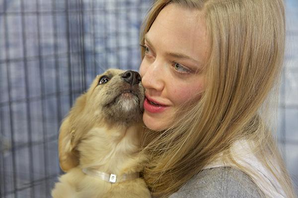 Amanda Seyfried. Photo Credit: Best Friends Animal Society