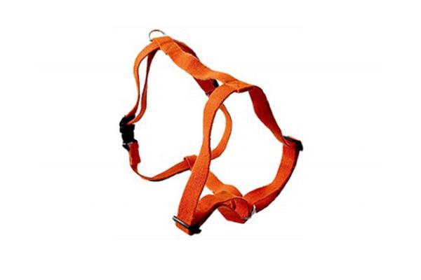 earthdog harness