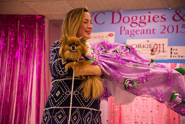 Behind the Scenes Doggies and Tiaras17