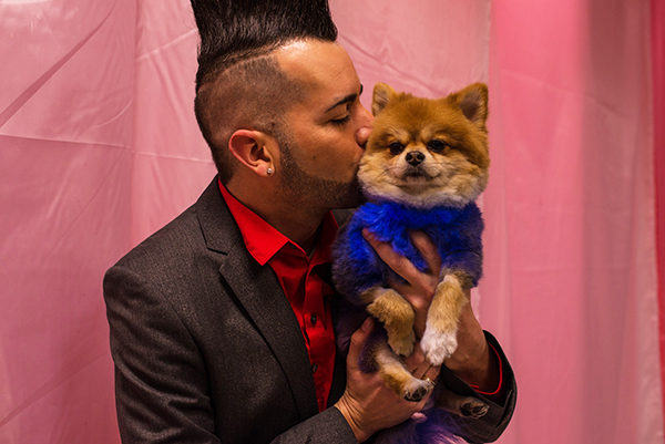 King Tut getting some kisses at the Doggies and Tiaras Pageant. Image via Cheyenne Cohen.
