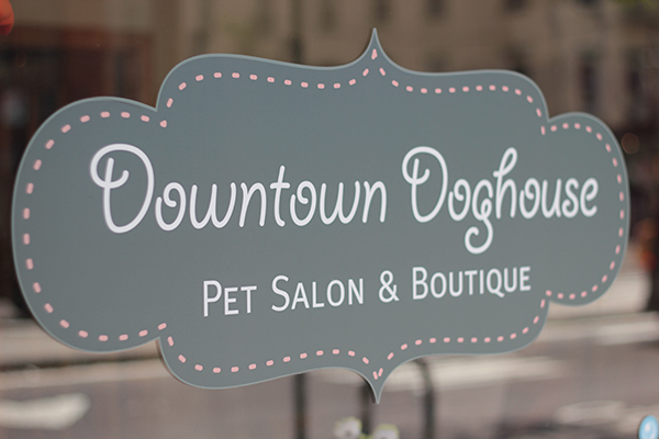 downtown doghouse 17