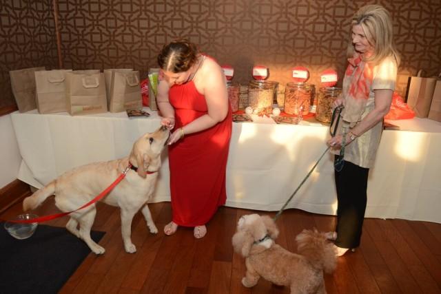 a fetching affair dog bar1