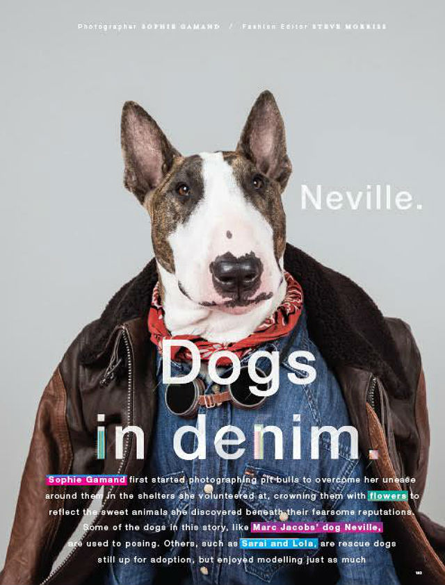 LOVe magazine Neville1