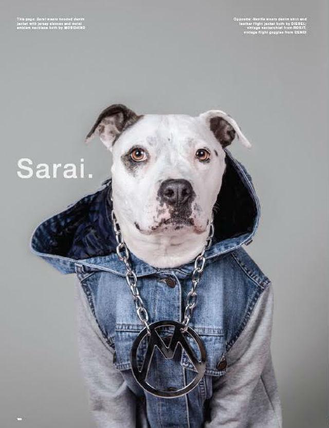 LOVe magazine Sarai