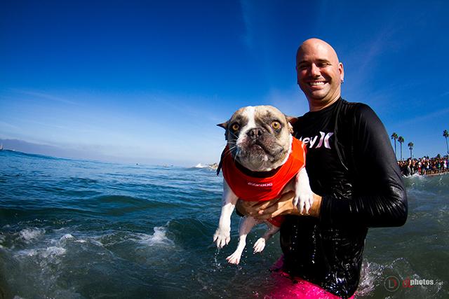 SurfCitySurfDog2015-14-2 resized