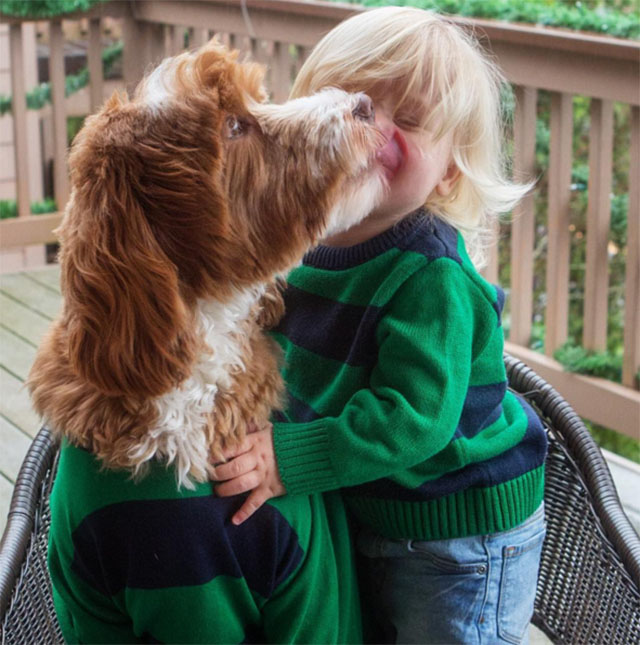 Adorable Dog And Foster Boy Pose